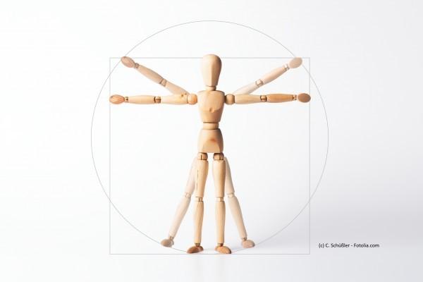 Dorn-Breuß-Ausbildung, Modul 2